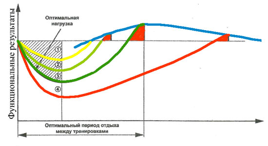 Оптимум схема